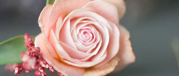 追求真实的道路,永无止境! - 俄罗斯手工仿真花工作室 Ikebana-Art 与手工花卉配饰