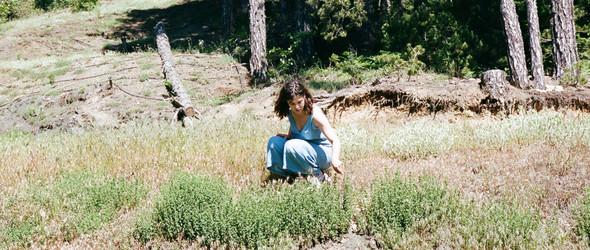 一个想让家乡香草世界闻名的女生 |希腊香草品牌 Daphnis and Chloe 创始人的故事